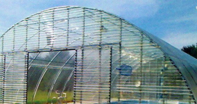 Polycarbonate Corrugated Sheets